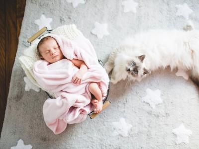 Photographe bébé Asnières Sur Seine - Séance à domicile