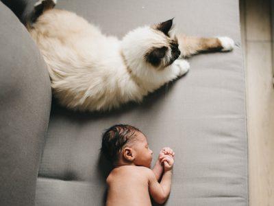 Photographe bébé Rueil-Malmaison - Elie